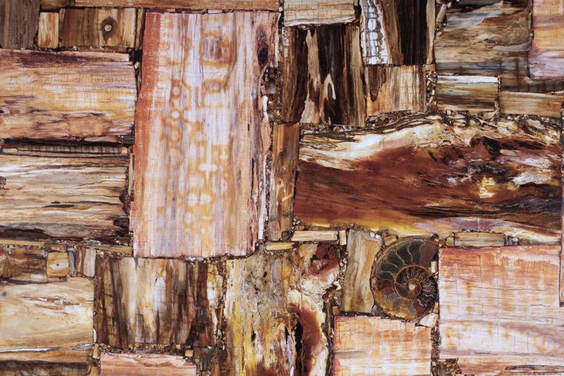 Retrò Petrified Wood